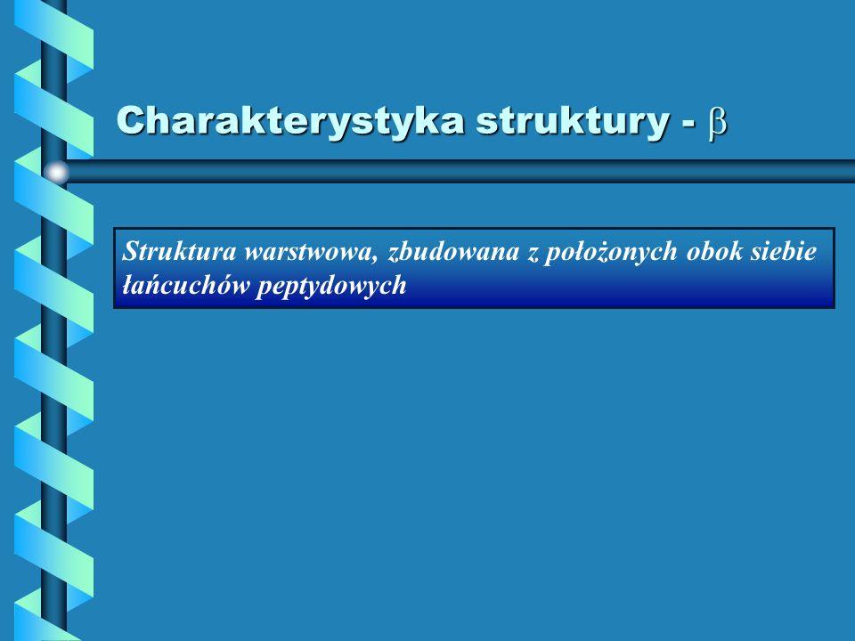 Charakterystyka struktury - Charakterystyka struktury - Struktura warstwowa, zbudowana z położonych obok siebie łańcuchów peptydowych
