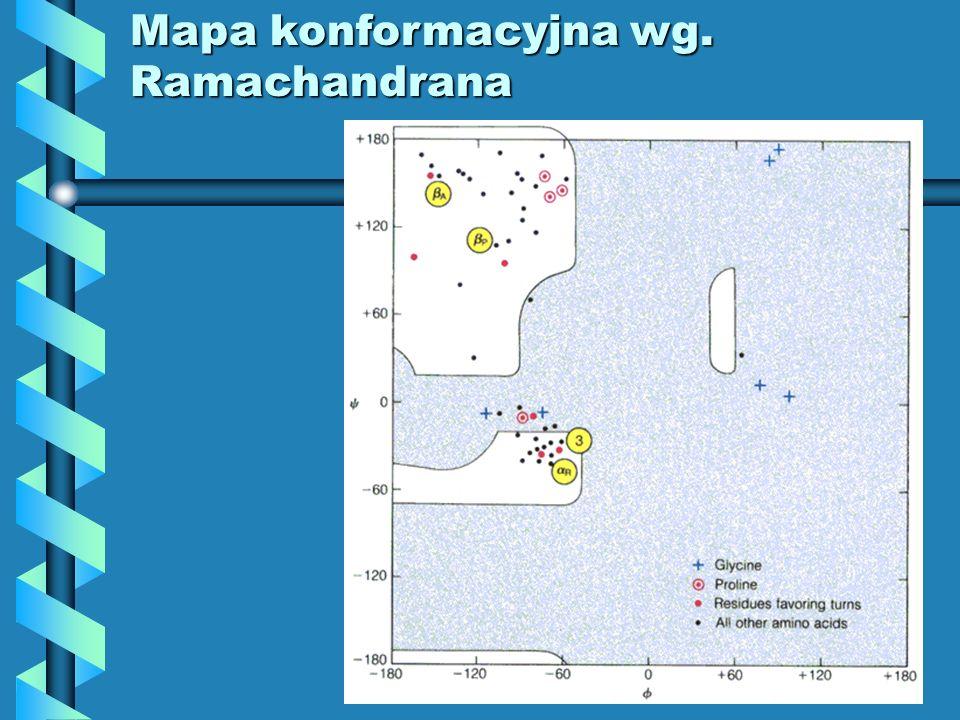 Mapa konformacyjna wg. Ramachandrana