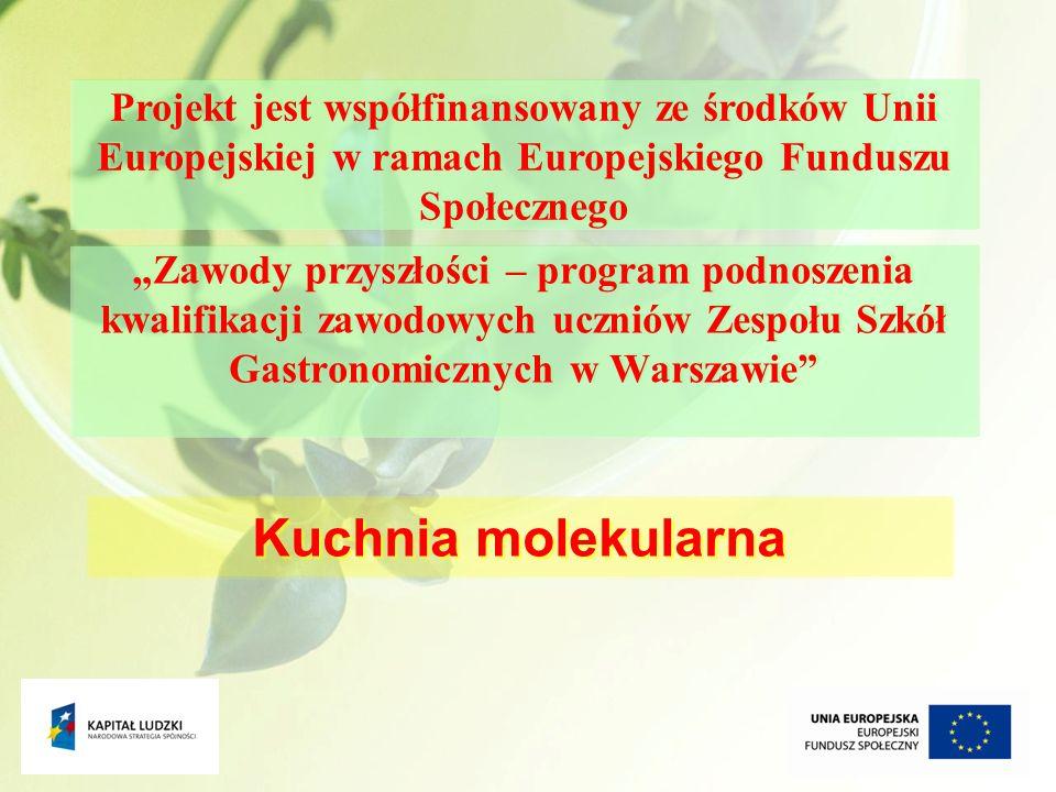 1 Zawody przyszłości – program podnoszenia kwalifikacji zawodowych uczniów Zespołu Szkół Gastronomicznych w Warszawie Kuchnia molekularna Projekt jest