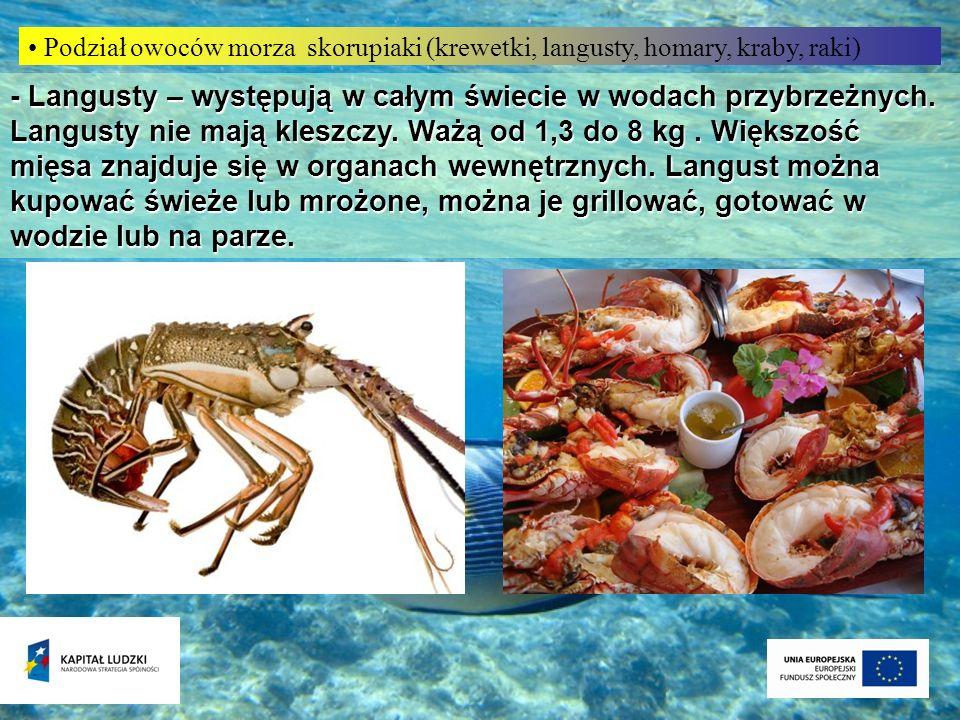 Podział owoców morza skorupiaki (krewetki, langusty, homary, kraby, raki) - Langusty – występują w całym świecie w wodach przybrzeżnych. Langusty nie