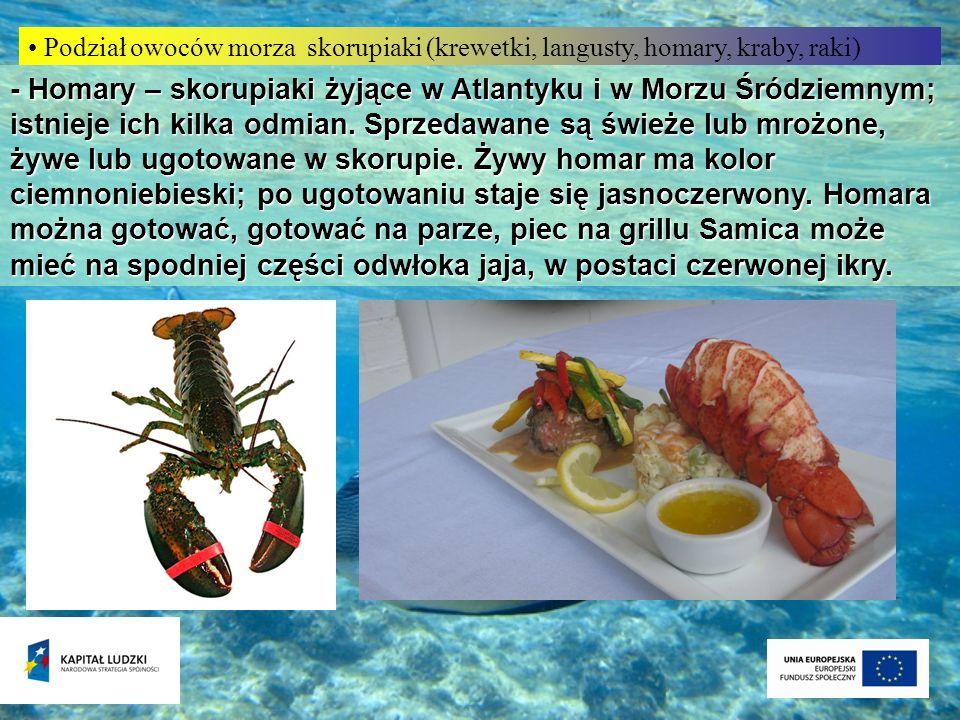 Podział owoców morza skorupiaki (krewetki, langusty, homary, kraby, raki) - Homary – skorupiaki żyjące w Atlantyku i w Morzu Śródziemnym; istnieje ich