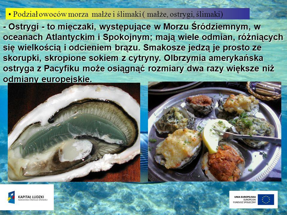 Podział owoców morza małże i ślimaki ( małże, ostrygi, ślimaki) - Ostrygi - to mięczaki, występujące w Morzu Śródziemnym, w oceanach Atlantyckim i Spo