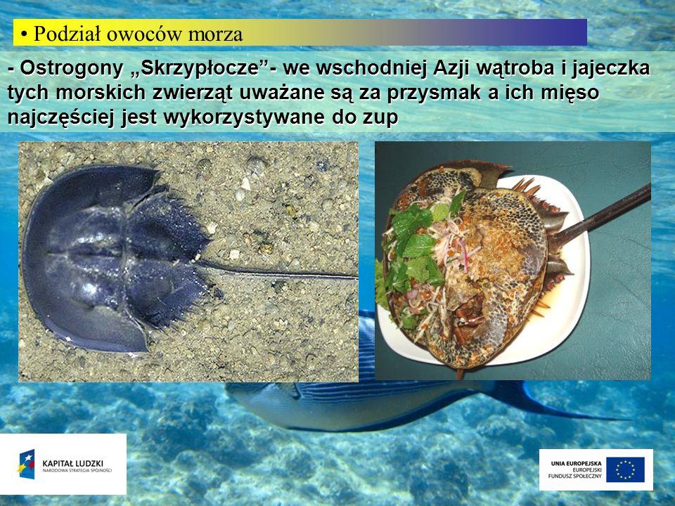 Podział owoców morza - Ostrogony Skrzypłocze- we wschodniej Azji wątroba i jajeczka tych morskich zwierząt uważane są za przysmak a ich mięso najczęśc