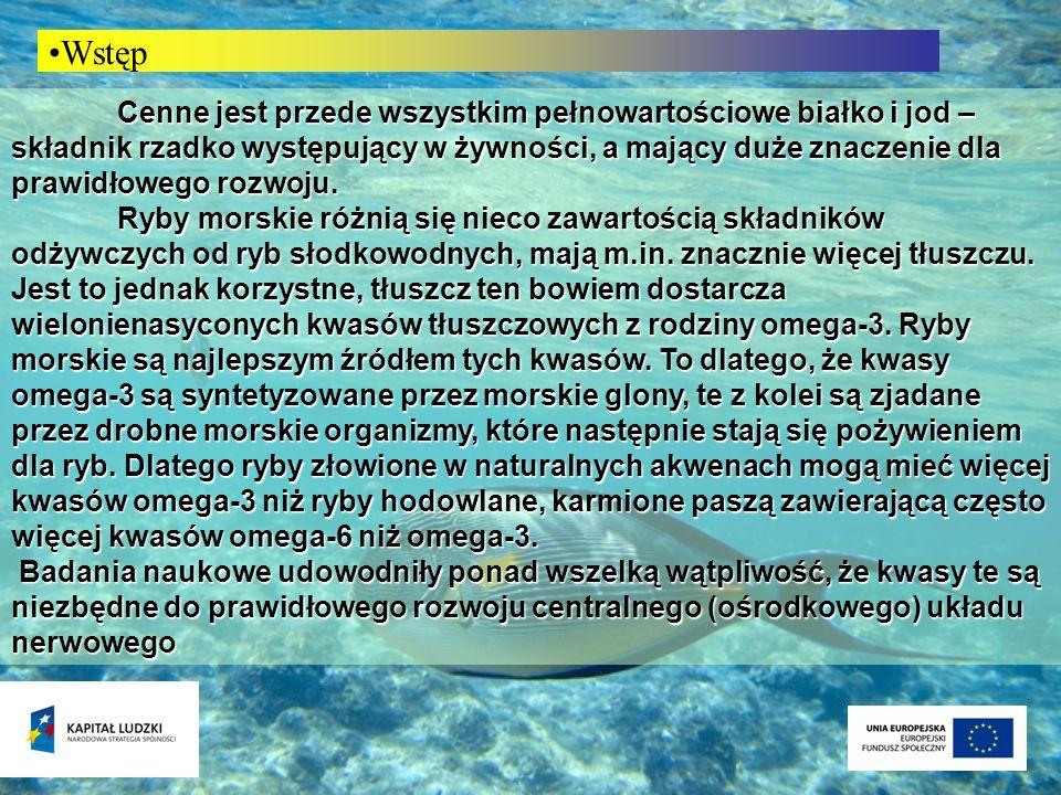 Owoce morza (frutti di mare) czyli rozmaite zwierzęta morskie, jak skorupiaki i mięczaki w tym małże, głowonogi i szkarłupnie, w wielu krajach uważane są za prawdziwe rarytasy.