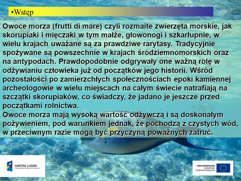 - głowonogi (mątwy, kalmary, ośmiornice) Podział owoców morza - małże i ślimaki ( małże, ostrygi, ślimaki) - skorupiaki (krewetki, langusty, homary, kraby, raki) - Inne (żaby, ostrogony, jeżowce)