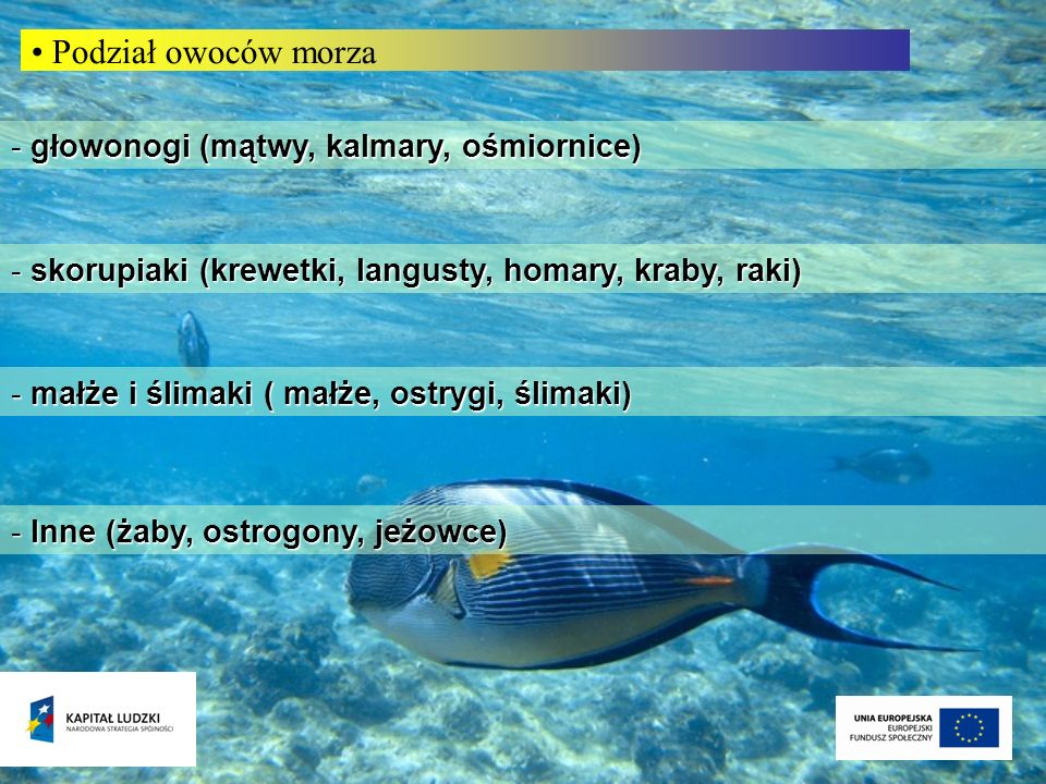 - głowonogi (mątwy, kalmary, ośmiornice) Podział owoców morza - małże i ślimaki ( małże, ostrygi, ślimaki) - skorupiaki (krewetki, langusty, homary, k