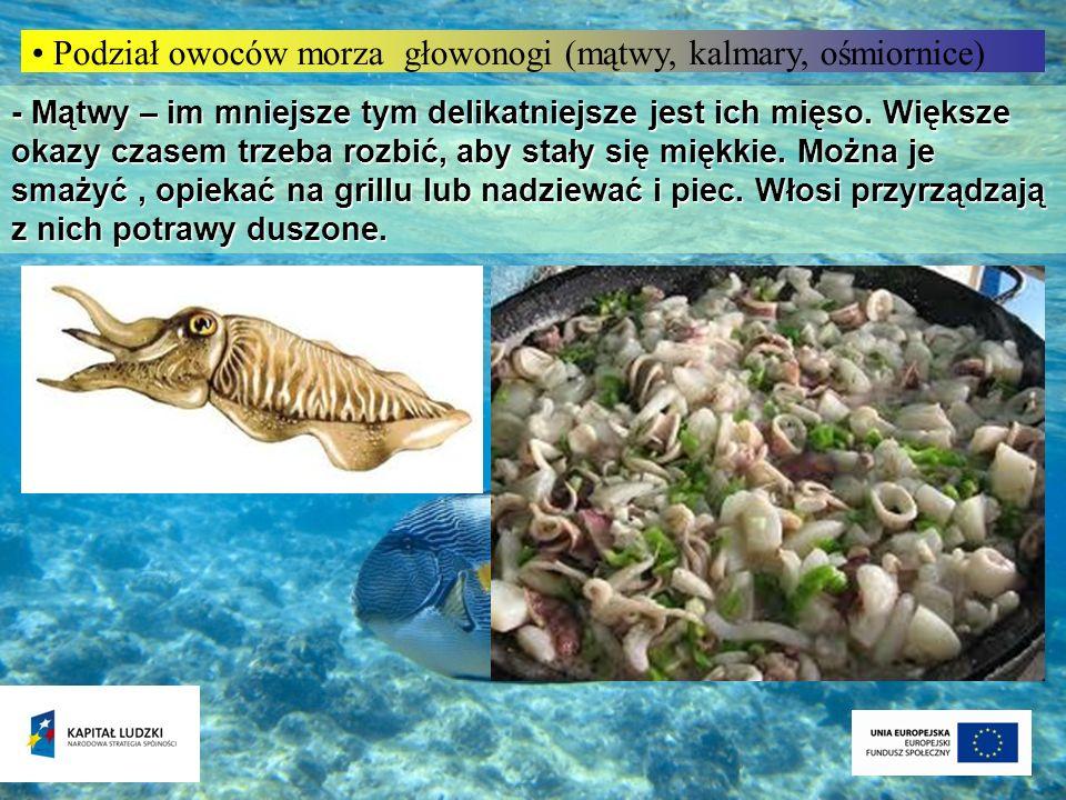 Podział owoców morza głowonogi (mątwy, kalmary, ośmiornice) - Mątwy – im mniejsze tym delikatniejsze jest ich mięso. Większe okazy czasem trzeba rozbi