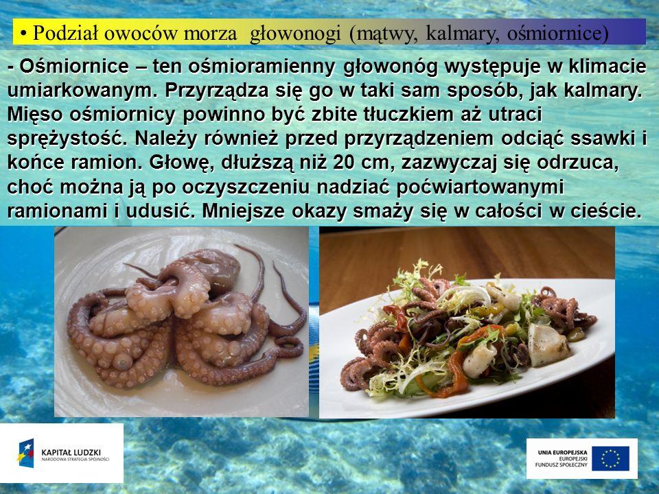 Podział owoców morza głowonogi (mątwy, kalmary, ośmiornice) - Ośmiornice – ten ośmioramienny głowonóg występuje w klimacie umiarkowanym. Przyrządza si