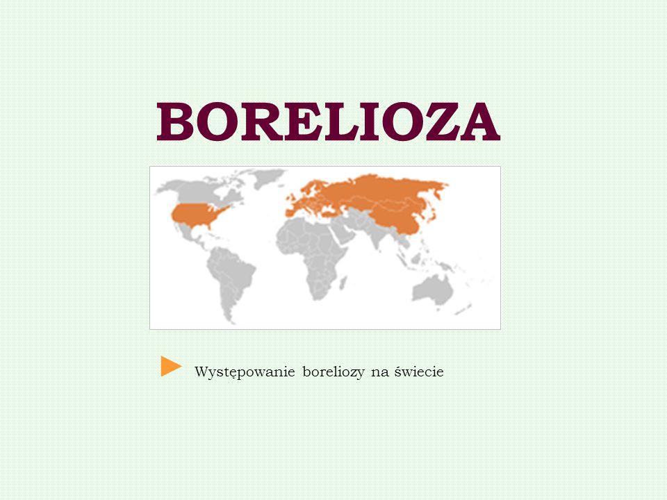 BORELIOZA Występowanie boreliozy na świecie