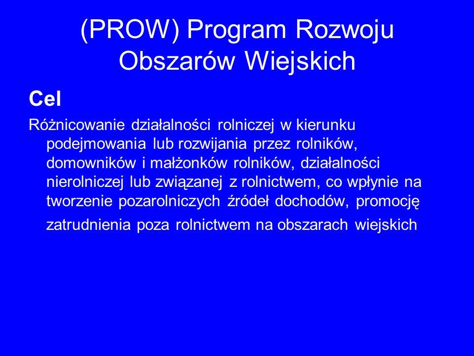 (PROW) Program Rozwoju Obszarów Wiejskich Cel Różnicowanie działalności rolniczej w kierunku podejmowania lub rozwijania przez rolników, domowników i