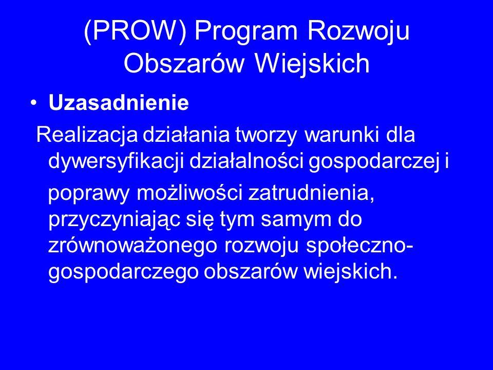 (PROW) Program Rozwoju Obszarów Wiejskich Uzasadnienie Realizacja działania tworzy warunki dla dywersyfikacji działalności gospodarczej i poprawy możl