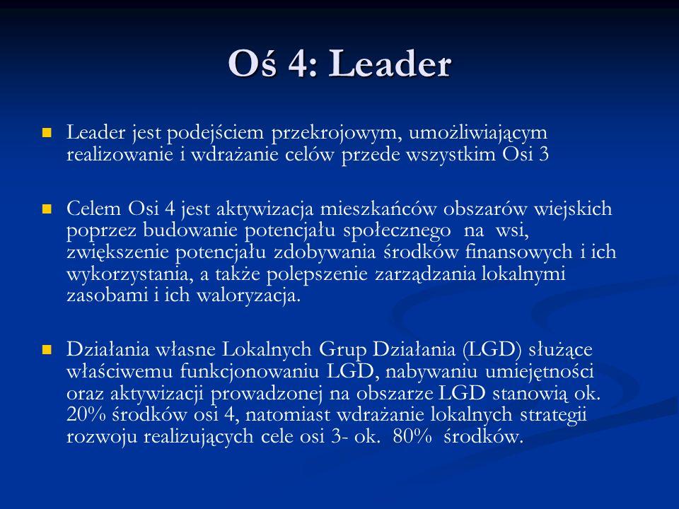 Oś 4: Leader Leader jest podejściem przekrojowym, umożliwiającym realizowanie i wdrażanie celów przede wszystkim Osi 3 Celem Osi 4 jest aktywizacja mi