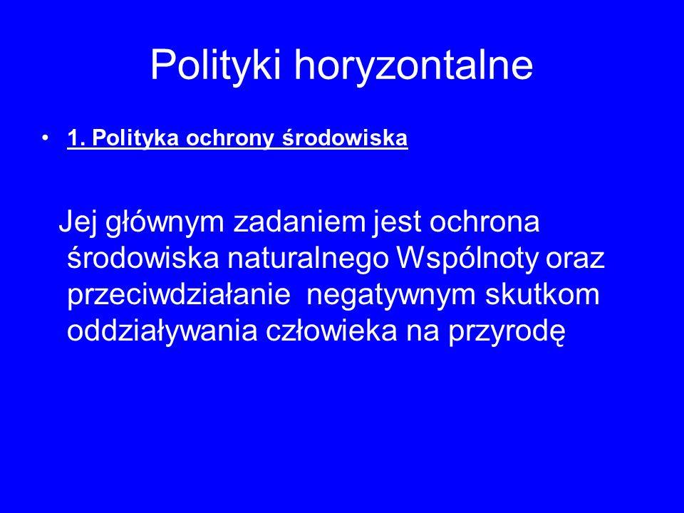 Polityki horyzontalne 1.