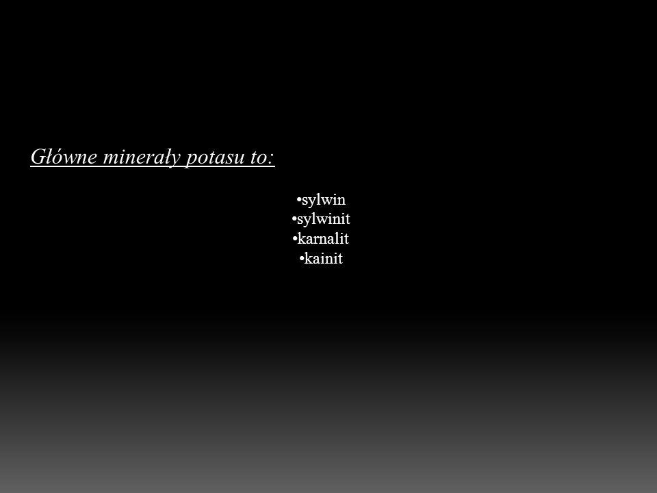Główne minerały potasu to: sylwin sylwinit karnalit kainit
