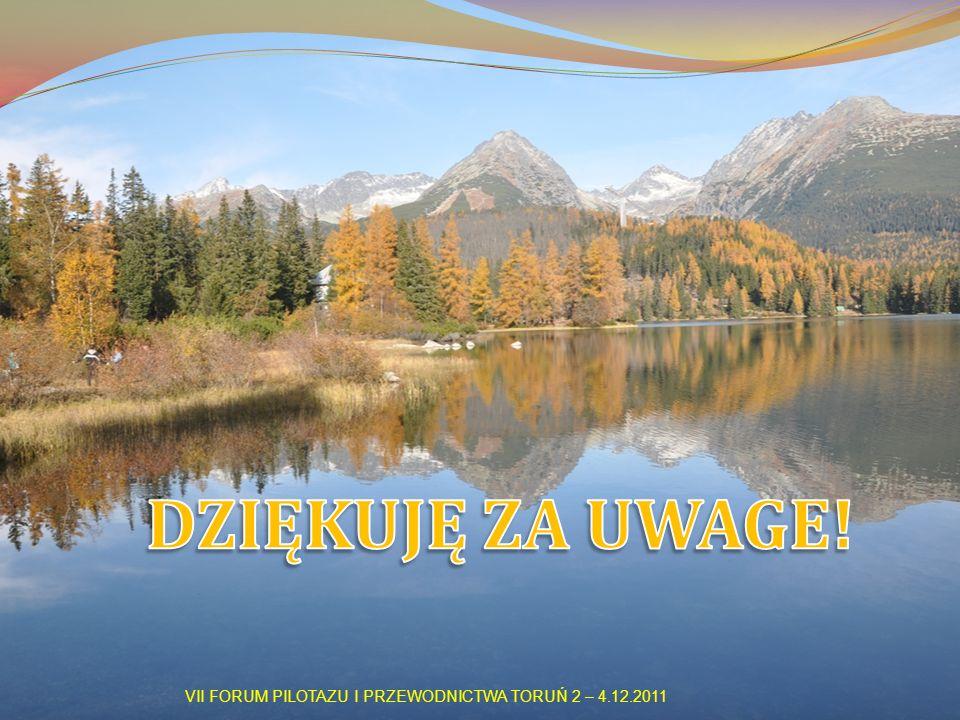 VII FORUM PILOTAZU I PRZEWODNICTWA TORUŃ 2 – 4.12.2011