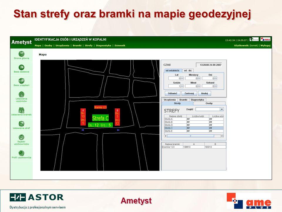 Dystrybucja z profesjonalnym serwisem Ametyst Stan strefy oraz bramki na mapie geodezyjnej