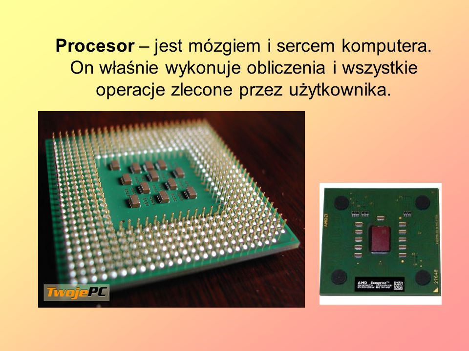 Procesor – jest mózgiem i sercem komputera. On właśnie wykonuje obliczenia i wszystkie operacje zlecone przez użytkownika.