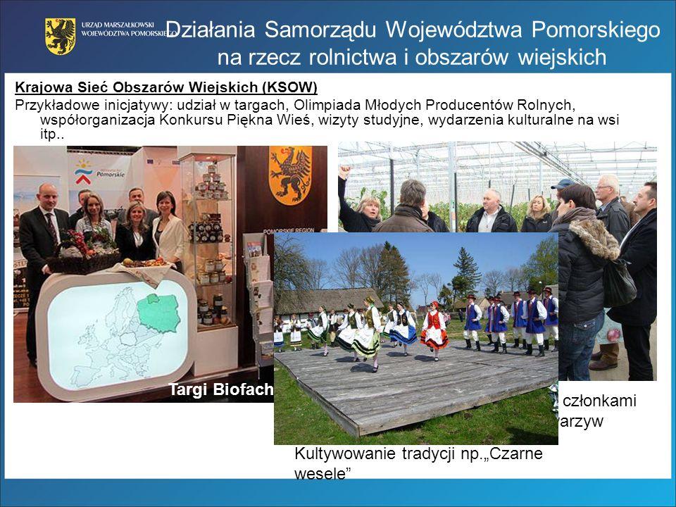 Działania Samorządu Województwa Pomorskiego na rzecz rolnictwa i obszarów wiejskich Krajowa Sieć Obszarów Wiejskich (KSOW) Przykładowe inicjatywy: udz