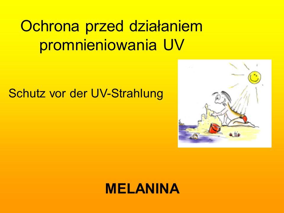 Ochrona przed działaniem promnieniowania UV MELANINA Schutz vor der UV-Strahlung