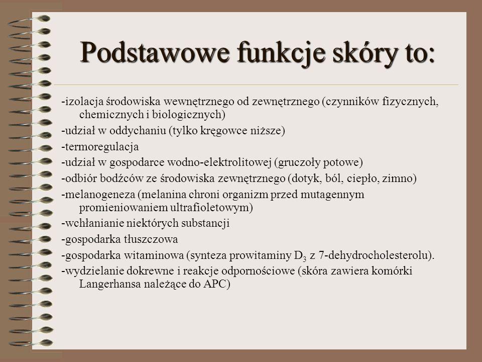 Podstawowe funkcje skóry to: -izolacja środowiska wewnętrznego od zewnętrznego (czynników fizycznych, chemicznych i biologicznych) -udział w oddychani