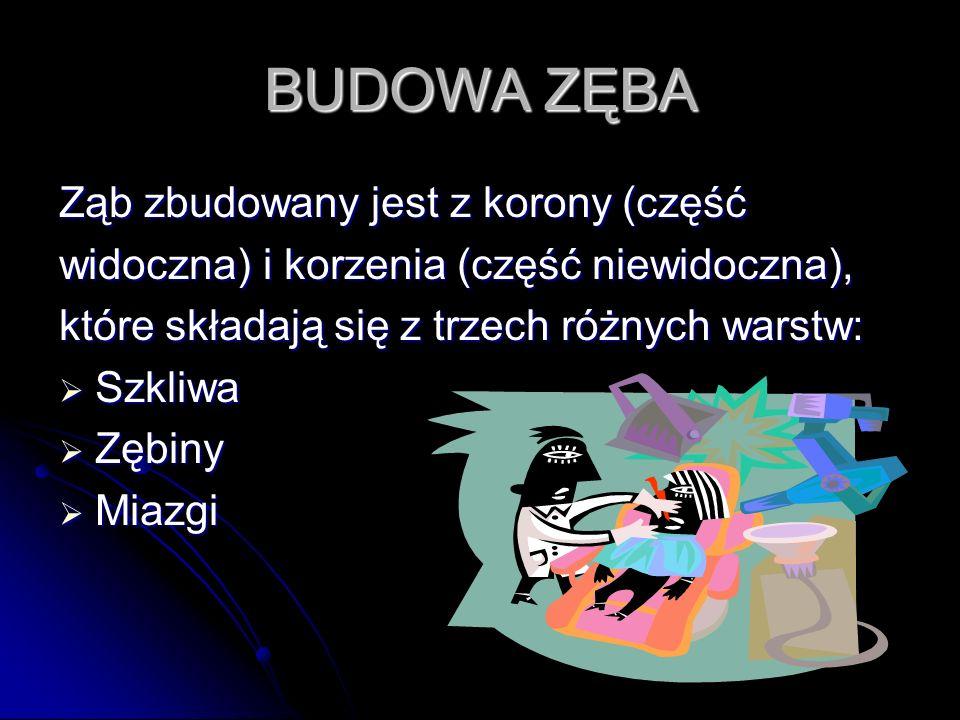 BUDOWA ZĘBA Ząb zbudowany jest z korony (część widoczna) i korzenia (część niewidoczna), które składają się z trzech różnych warstw: Szkliwa Zębiny Mi