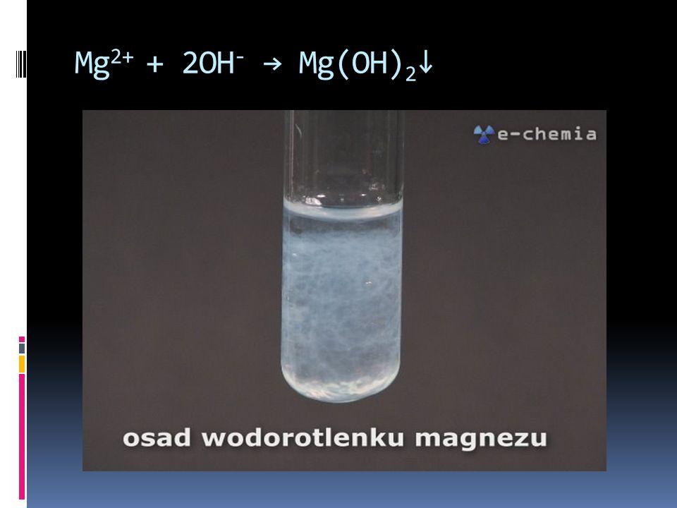 Mg 2+ + 2OH - Mg(OH) 2