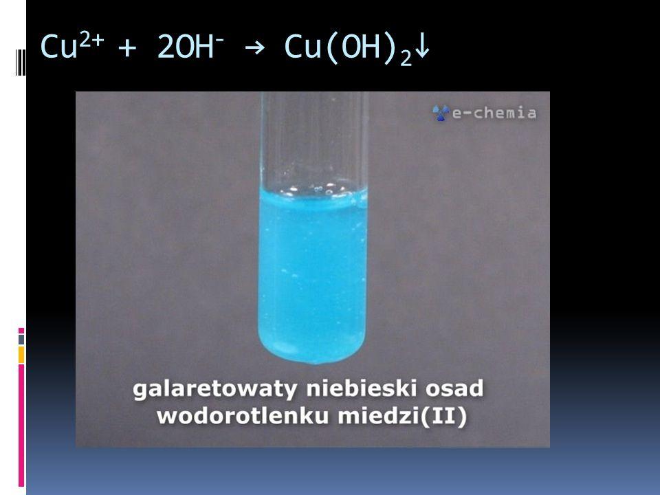 Cu 2+ + 2OH - Cu(OH) 2