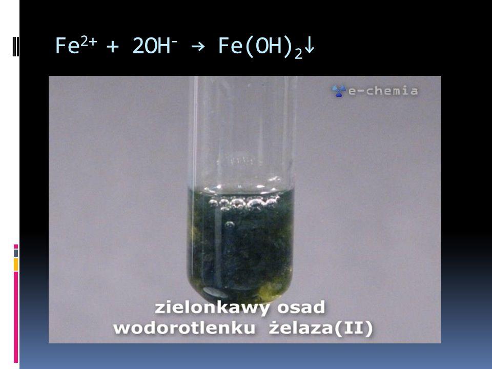Fe 2+ + 2OH - Fe(OH) 2