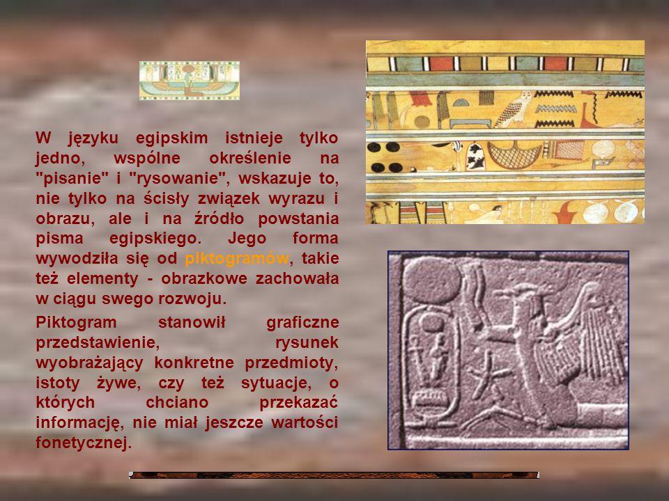 W języku egipskim istnieje tylko jedno, wspólne określenie na