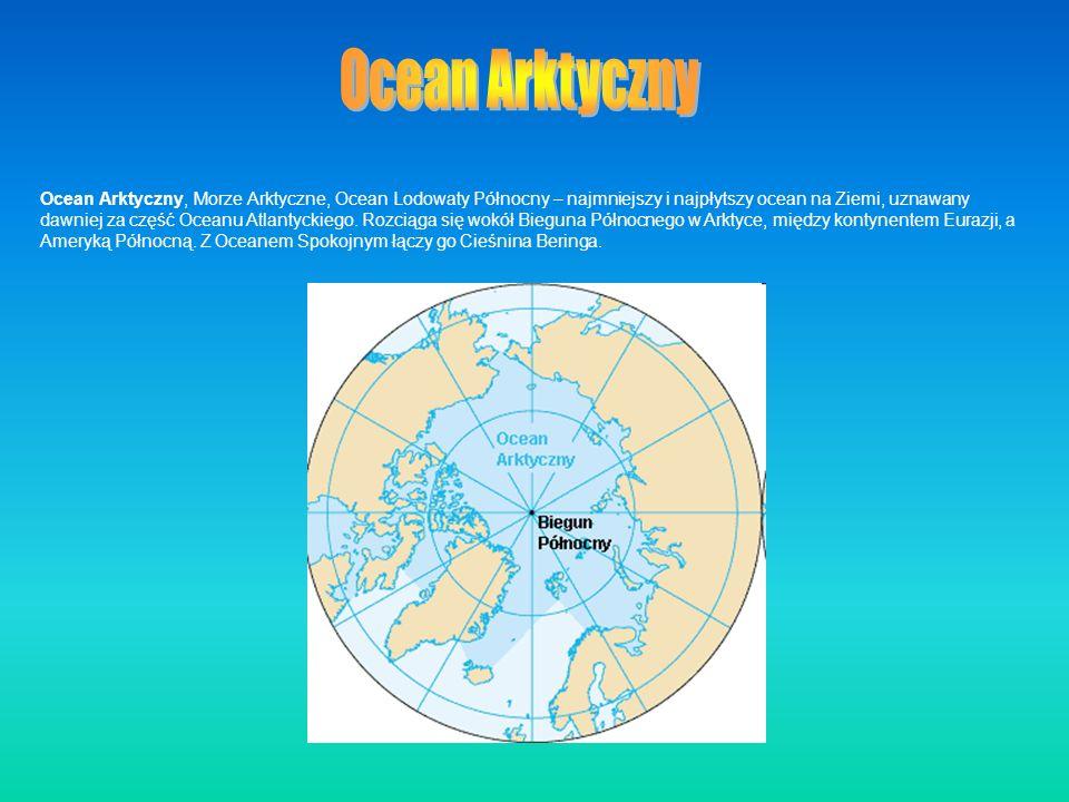 Ocean Arktyczny, Morze Arktyczne, Ocean Lodowaty Północny – najmniejszy i najpłytszy ocean na Ziemi, uznawany dawniej za część Oceanu Atlantyckiego. R