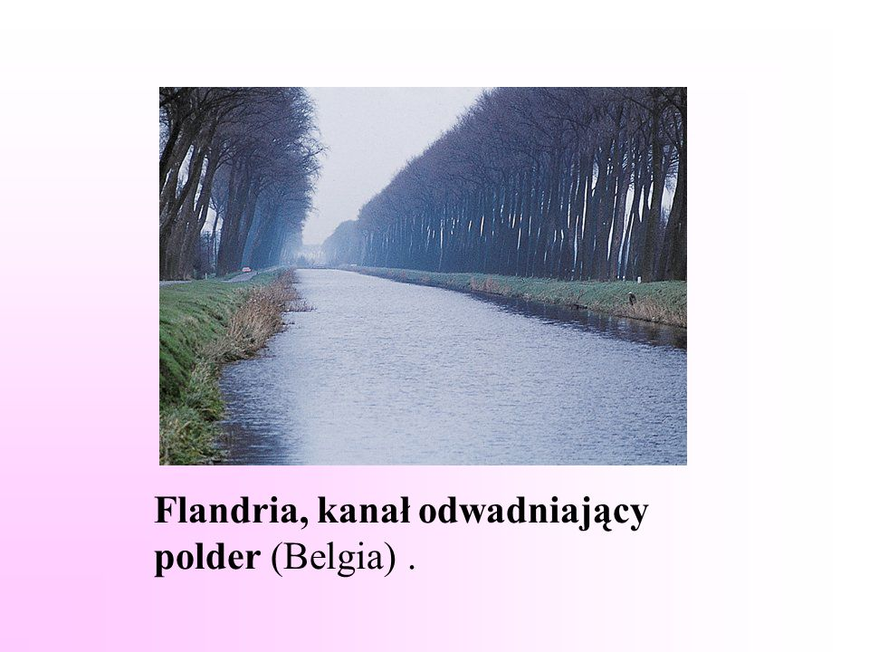 Flandria, kanał odwadniający polder (Belgia).