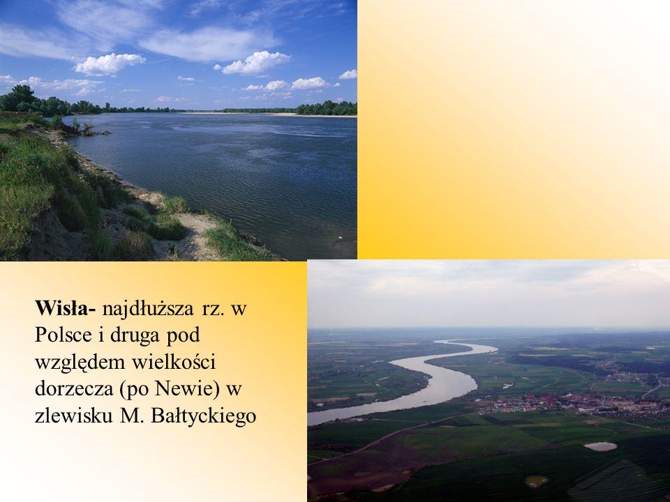 Wisła- najdłuższa rz. w Polsce i druga pod względem wielkości dorzecza (po Newie) w zlewisku M. Bałtyckiego