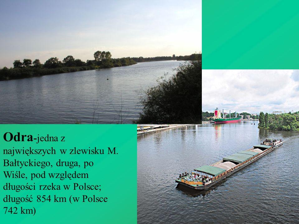 Odra -jedna z największych w zlewisku M. Bałtyckiego, druga, po Wiśle, pod względem długości rzeka w Polsce; długość 854 km (w Polsce 742 km)