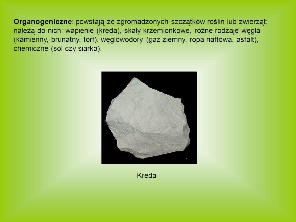 Organogeniczne: powstają ze zgromadzonych szczątków roślin lub zwierząt; należą do nich: wapienie (kreda), skały krzemionkowe, różne rodzaje węgla (ka