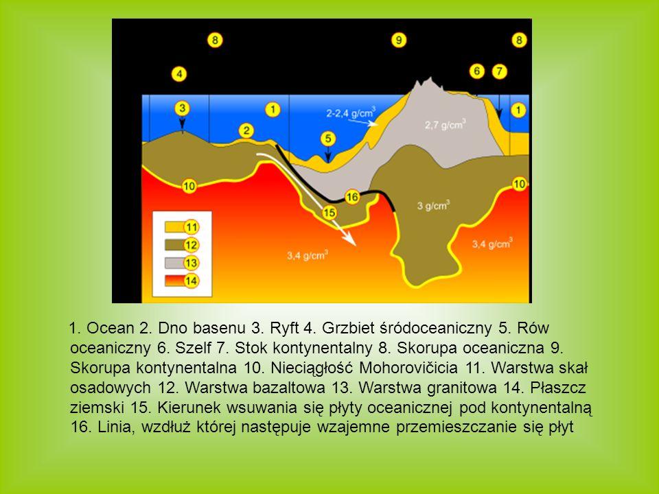 1. Ocean 2. Dno basenu 3. Ryft 4. Grzbiet śródoceaniczny 5. Rów oceaniczny 6. Szelf 7. Stok kontynentalny 8. Skorupa oceaniczna 9. Skorupa kontynental