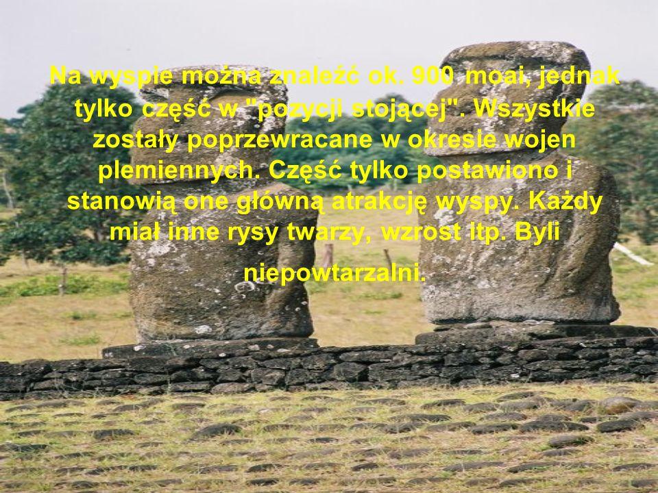 Na wyspie można znaleźć ok. 900 moai, jednak tylko część w
