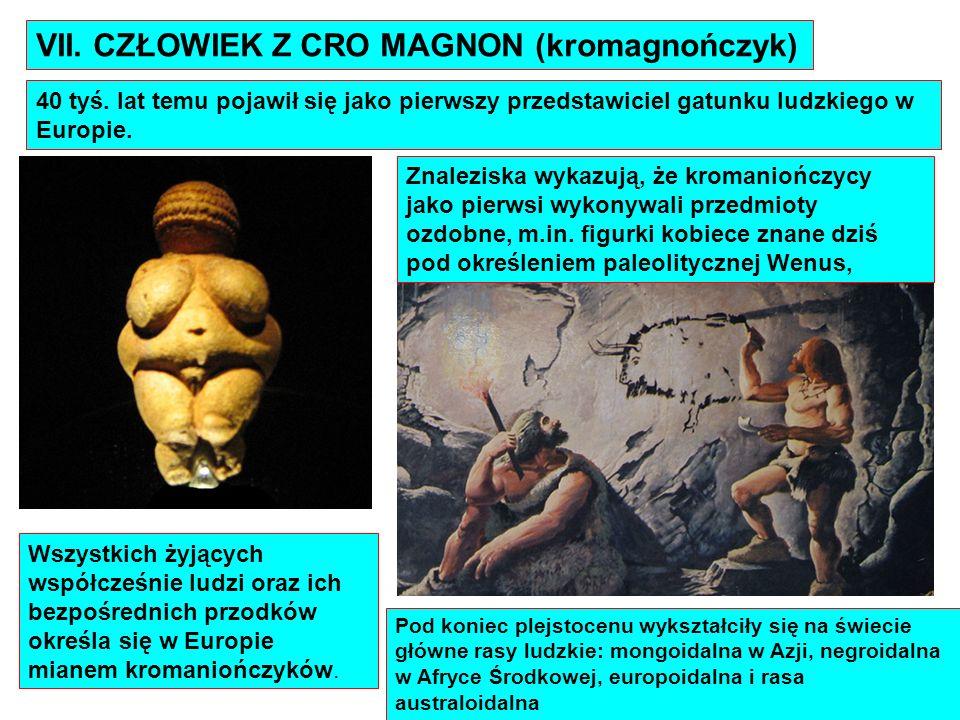 VII. CZŁOWIEK Z CRO MAGNON (kromagnończyk) 40 tyś. lat temu pojawił się jako pierwszy przedstawiciel gatunku ludzkiego w Europie. Wszystkich żyjących