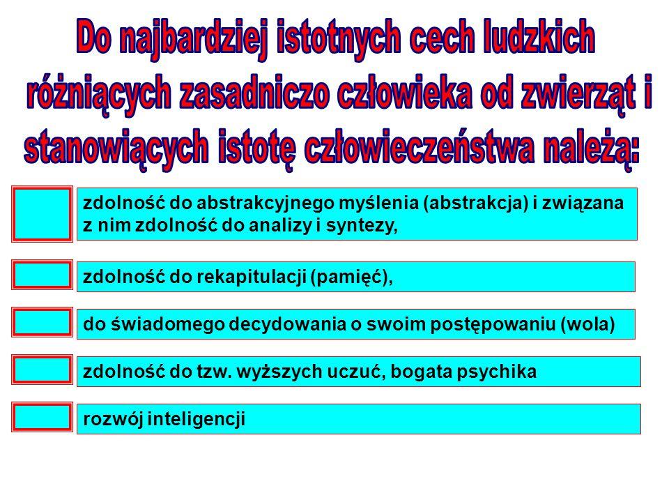 zdolność do abstrakcyjnego myślenia (abstrakcja) i związana z nim zdolność do analizy i syntezy, zdolność do rekapitulacji (pamięć), do świadomego dec