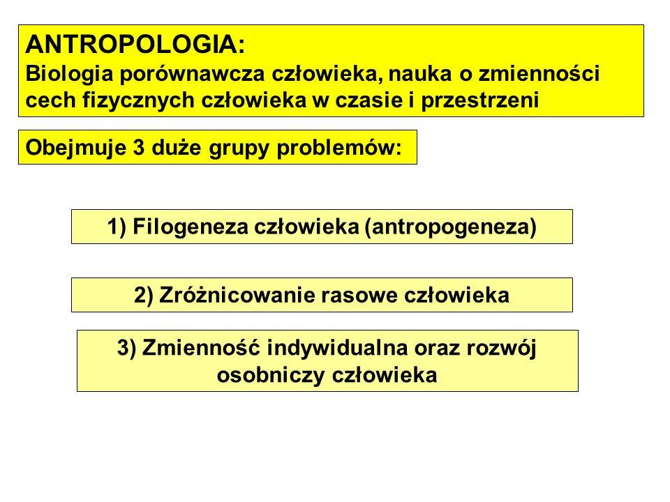 ANTROPOLOGIA: Biologia porównawcza człowieka, nauka o zmienności cech fizycznych człowieka w czasie i przestrzeni Obejmuje 3 duże grupy problemów: 1)