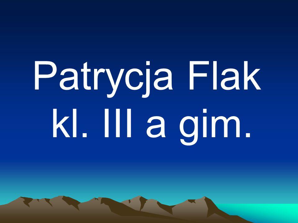 Patrycja Flak kl. III a gim.