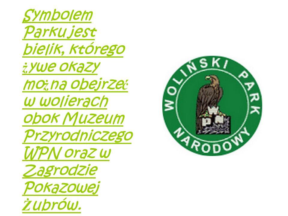 Symbolem Parku jest bielik, którego ż ywe okazy mo ż na obejrze ć w wolierach obok Muzeum Przyrodniczego WPN oraz w Zagrodzie Pokazowej Ż ubrów.