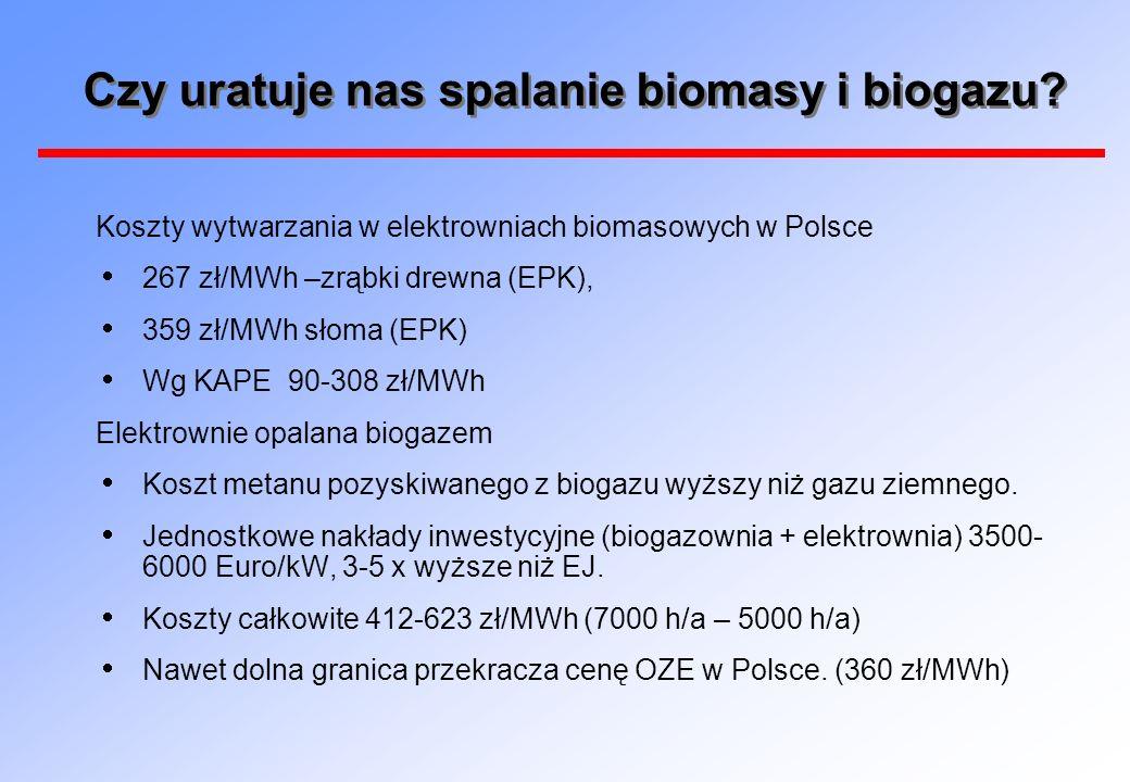Czy uratuje nas spalanie biomasy i biogazu? Koszty wytwarzania w elektrowniach biomasowych w Polsce 267 zł/MWh –zrąbki drewna (EPK), 359 zł/MWh słoma