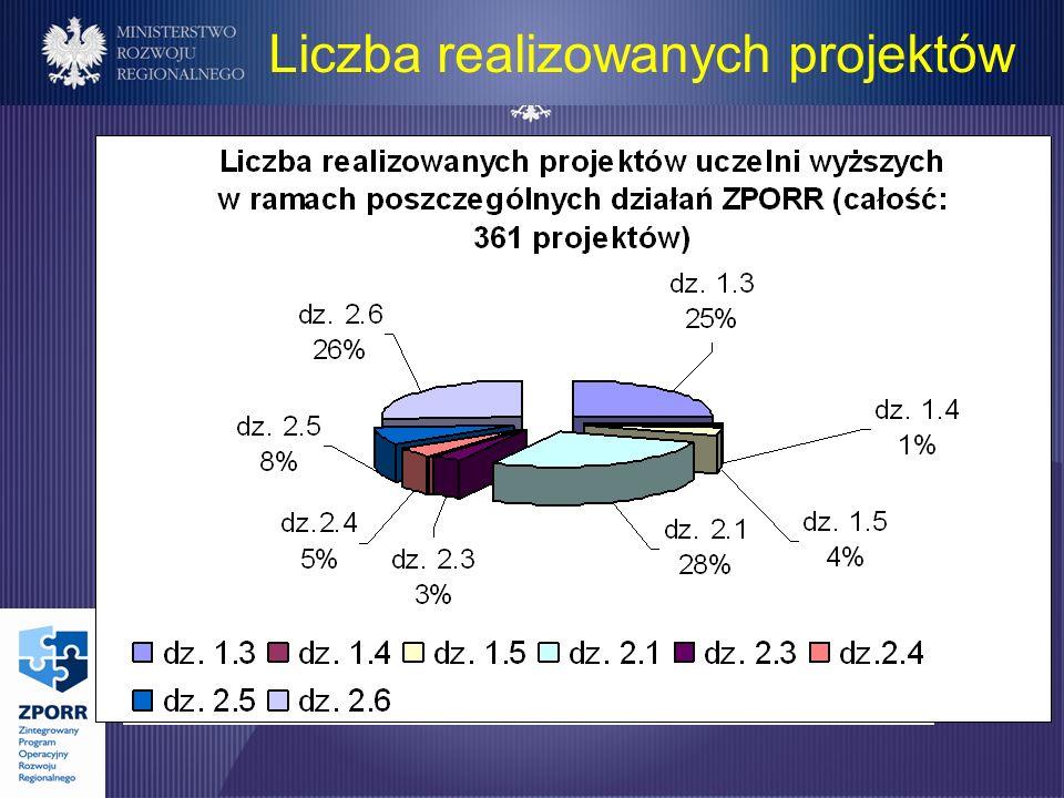 Liczba realizowanych projektów