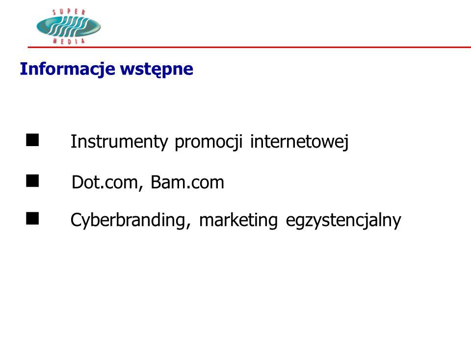 Informacje wstępne n Dot.com, Bam.com n Instrumenty promocji internetowej n Cyberbranding, marketing egzystencjalny