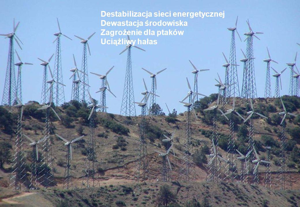 Destabilizacja sieci energetycznej Dewastacja środowiska Zagrożenie dla ptaków Uciążliwy hałas