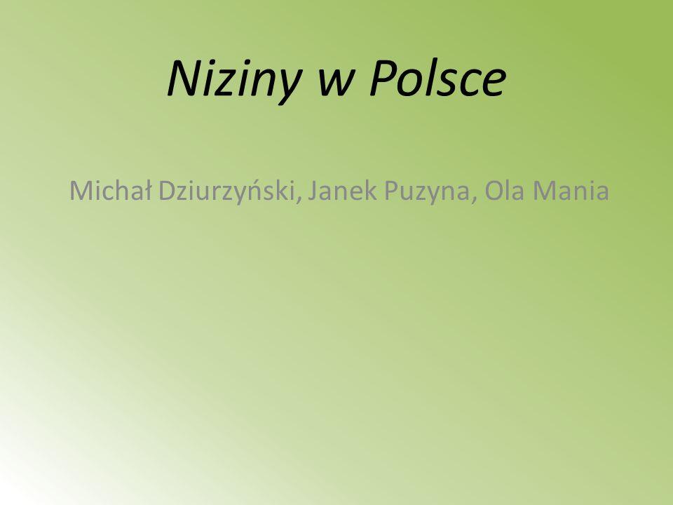 Niziny w Polsce Michał Dziurzyński, Janek Puzyna, Ola Mania