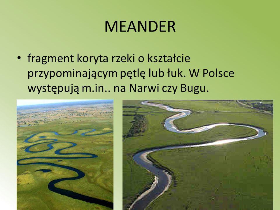MEANDER fragment koryta rzeki o kształcie przypominającym pętlę lub łuk. W Polsce występują m.in.. na Narwi czy Bugu.
