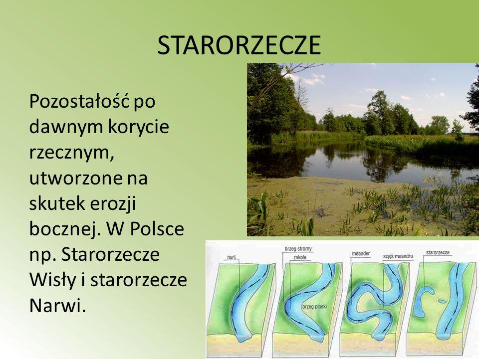 STARORZECZE Pozostałość po dawnym korycie rzecznym, utworzone na skutek erozji bocznej. W Polsce np. Starorzecze Wisły i starorzecze Narwi.