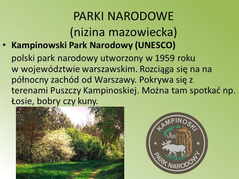 PARKI NARODOWE (nizina mazowiecka) Kampinowski Park Narodowy (UNESCO) polski park narodowy utworzony w 1959 roku w województwie warszawskim. Rozciąga