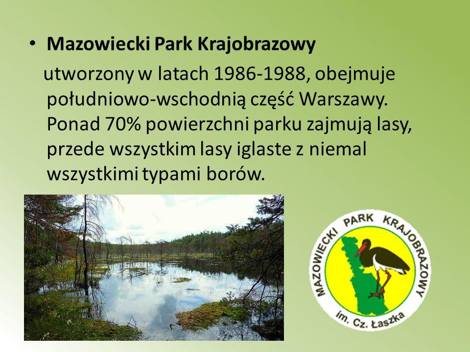Mazowiecki Park Krajobrazowy utworzony w latach 1986-1988, obejmuje południowo-wschodnią część Warszawy. Ponad 70% powierzchni parku zajmują lasy, prz